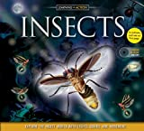 They're colorful and camouflaged, dangerous and disgusting! See and hear the strangest and most fascinating creatures on the planet like never before in the exciting new title in the popular Learning in Action series. Learning in Action: Insects will...