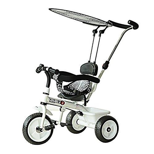 Homcom Tricycle Enfants Poussette Pare-Soleil Pliable Canne télescopique Amovible Benne Rangement 103...