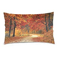 Buyxbn Fall Autumn Orange Nature 50x91 cm Pillow Case Cover Pillowslip Cushion Pillowcases Protectors Slip Bed Bedroom Single 20x36 inches