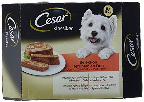 Cesar Hundefutter Klassiker Selektion, 3 er Pack (3 x 8 Schalen x 150g)