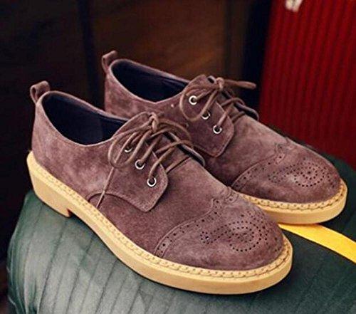 Chaussures Pour Dames Bureau Et Carrière Fasten Brogue Martin Taille 35to42 Café