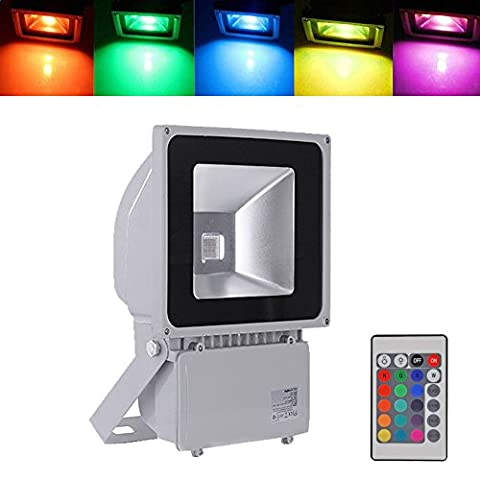 100W RGB LED, Colour Changing LED, Remote Control, 16 Colours & 4 Modes, Memory Function Outdoor Led, Security Lights, 1980LM, AC 85-265V, for Garden,Lanscape, Billboards,