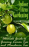 Indoor Citrus Gardening: Ultimate Guide to Growing Lemon Tree and Mandarin Tree