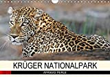 KRÜGER NATIONALPARK Afrikas Perle (Wandkalender 2018 DIN A4 quer): Faszinierende Tiere und Natur (Monatskalender, 14 Seiten ) (CALVENDO Tiere) [Kalender] [Apr 25, 2017] Woyke, Wibke