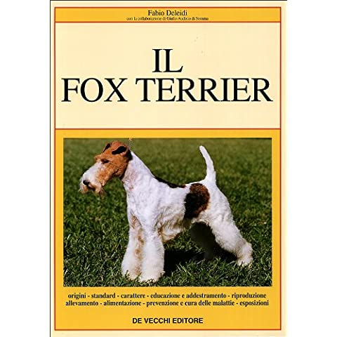 Il fox terrier