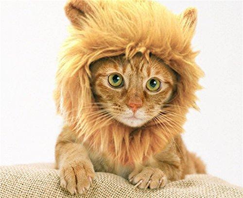 Pet Costume Leone criniera parrucca Neckchief per cane gatto Festival Dress Up Brown