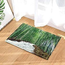 LUIXJGEDF Landschaftsdekor,exotische asiatischen natürlichen Wasserfall in Bambus Wald Badteppiche,Rutschfeste Fußmatte Bodeneingänge Indoor Haustürmatte,Kinder Badematte,40X60Cm,Bad-Accessoires
