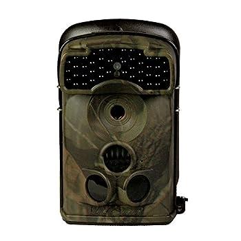 Acorn 5310A C mara para la...