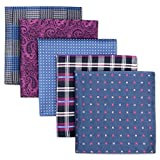 Shlax&Wing 5 Pieces Assorted Pañuelo De Bolsillo Para Hombre Handkerchiefs Set