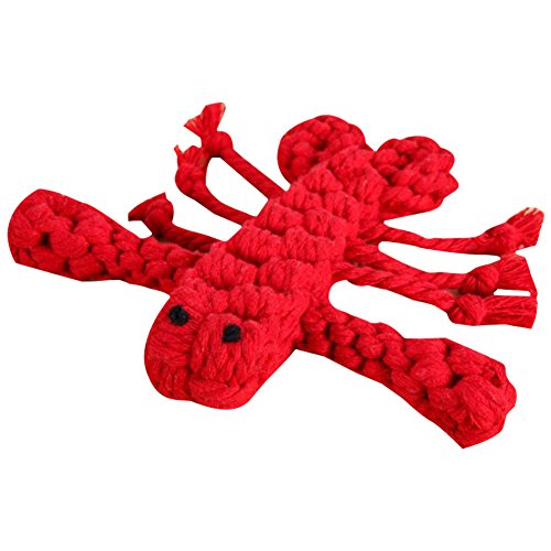 ndespielzeug (Krebse) Welpen Zahn ziehen für Kleine Gummi sauber Spielzeug Medium züchtet Hund Massage 1CP ()
