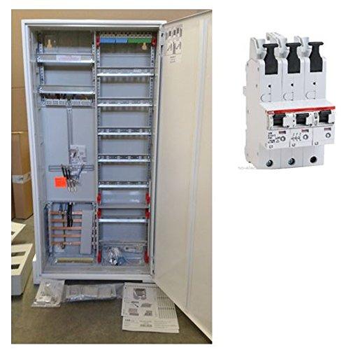 TM: Striebel&John ABB Zählerschrank 1 Zähler 3.HZ verdrahtet mit APZ-Verteilerfeld/KS243Z + 1x ABB SLS 63A, für das Einfamilienhaus