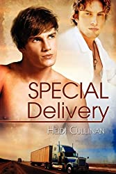 Special Delivery by Heidi Cullinan (2010-02-15)