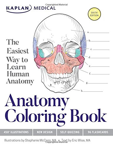 88+ Anatomy Coloring Book Pdf Download Picture HD