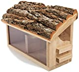 NEST TO NEST Squirrel feeder | Squirrel Feeding Station | Squirrel Feeder for Garden | Squirrel Feeder Box, Premium Quality