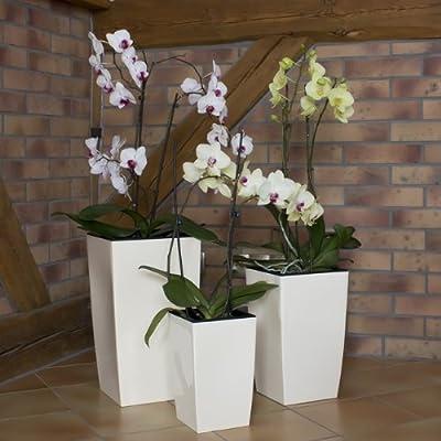 Dekoratives 3er Set Blumenkübel Blumentopf creme weiß glänzend Pflanzeinsatz Coubi Serie von Prosperplast - Du und dein Garten