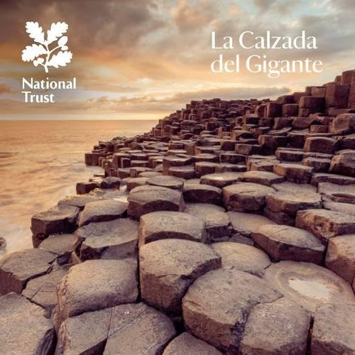 Giant's Causeway: National Trust Guidebook par Anna Groves