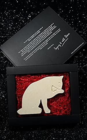 HandMade in Italy Stone Cat Licking Paw - Elegant gift box and message card included - Ancient and beautiful Italian limestone containing fossil fragments - Symbolises Patience, Spirit of Adventure, Curiosity and Independence - Cat Presents Cat Lover gifts retirement gifts for women man gifts for mum her girls new home gifts for vet wife best friend birthday years old Abyssinian American Shorthair Birman Maine Coon Oriental Persian Ragdoll Siamese Sphynx Souvenir Lecce Puglia Apulia Cat Gifts