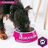 Eukanuba Puppy Medium Breed Trockenfutter (für Welpen mittlerer Hunderassen, Premiumnahrung mit Huhn), 15 kg Beutel - 9