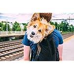 K9 Sport Sack | Dog Carrier Backpack for Small and Medium Pets | Front Facing Adjustable Dog Backpack Carrier | Fully… 16