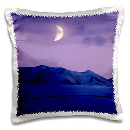 Danita Delimont - Moons - Alaska, Brooks Range, Moon, Trans-Alaskan Pipeline - US02 PSO0507 - Paul Souders - 16x16 inch Pillow Case (pc_87605_1) (Range Brooks Trans-alaska-pipeline)