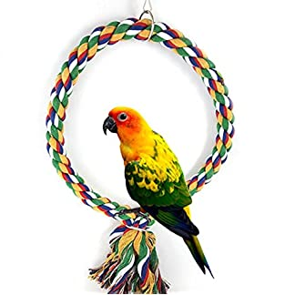 Colourful Bird Climbing Net Rope Ladder Chew Bite Toy for Parrot Macaw African Grey Budgie Cockatoo Parakeet Cockatiels Conure Lovebird Cage Chewing Toy Cage Pendant Decor Pet Supplies Colourful Bird Climbing Net Rope Ladder Chew Bite Toy for Parrot Macaw African Grey Budgie Cockatoo Parakeet Cockatiels Conure Lovebird Cage Chewing Toy Cage Pendant Decor Pet Supplies 51oNR3Y9dML