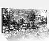 Acrylglasbild 100x40cm schwarz weiss Winter Schnee Weihnachten Landschaft Acrylbild Glasbild Acrylglas Acrylglasbilder 14A2095, Acrylglas Größe1:100cmx40cm
