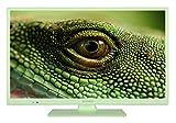 Telefunken XH24D101G 61 cm (24 Zoll) Fernseher (HD ready, Triple Tuner)