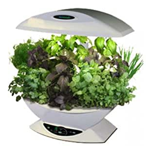 home hydro aerogarden mini serre d 39 int rieur avec kit semence d 39 herbes aromatiques blanc amazon. Black Bedroom Furniture Sets. Home Design Ideas