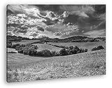 deyoli sommerliche Felder Format: 60x40 Effekt: Schwarz&Weiß als Leinwandbild, Motiv fertig gerahmt auf Echtholzrahmen, Hochwertiger Digitaldruck mit Rahmen, Kein Poster oder Plakat