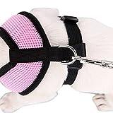 Contever® Verstellbar Rückseite Clip Harness Hundegeschirr Welpengeschirr Softgeschirr Brustgeschirr Halsbänder mit Leine (S: Brustumfang: 31cm; Halsumfang:22cm)-Rosa - 2