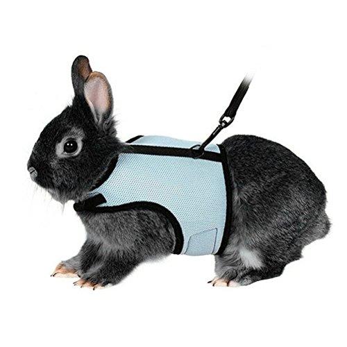 UEETEK Haustier Weicher Geschirr mit Blei für Kaninchen Bunny Little Pets, Support Haustiere Gewicht 1,5lbs - 4lbs, Größe XL (Sky Blue)