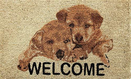 Coco & Coir Natural Coir | Antideslizante | Coco Grueso Respaldo de Goma | Ecológico | Interior | Exterior | Resistente | Serie de Mascotas | Felpudo de Entrada | 45 x 75 cm (Puppy Welcome)