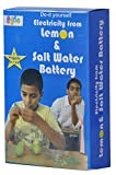 Kutuhal Lemon and Salt Water Battery Making Kit. Do It Yourself Science Activity
