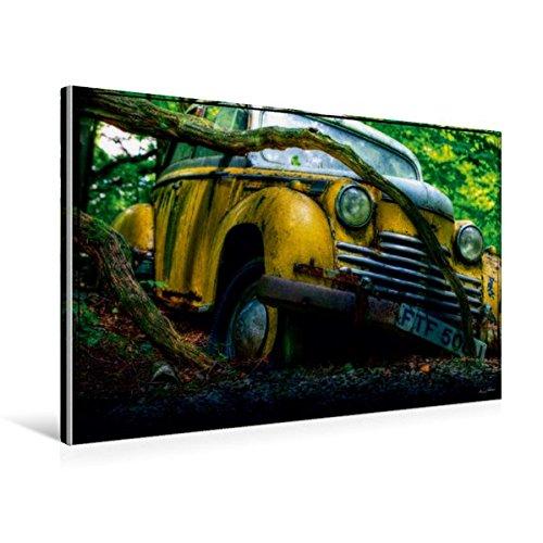 til-Leinwand 75 cm x 50 cm quer, Verfangen | Wandbild, Bild auf Keilrahmen, Fertigbild auf echter Leinwand, Leinwanddruck Mobilitaet Mobilitaet ()