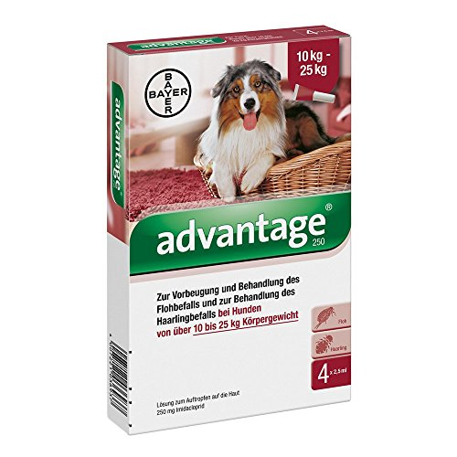 Bayer Vital GmbH Advantage 250 für Hunde Lösung 4 STK