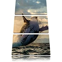 Megattere Canada foto Canvas 3 PC 120x80
