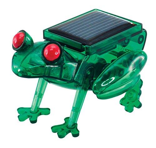 Solarbetriebener Frosch Solarmodell Solar Bausatz