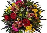 BUNTER Blumenstrauß | mit roten Rosen | Top DESING | 1A Qualität mit FRISCHEGARANTIE | FLORISTENMEISTERBETRIEB seit 2012 | SUPER SERVICE für Ihre SONDERWÜNSCHE | Blumenstrauß versenden zum Wunschtermin | ,,Farbenwelten,, | EXPRESSLIEFERUNG