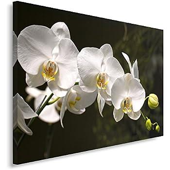 Macro Tableau imprim/é sur Toile Canvas 30x40 cm Blanc Tableau imprim/é XXL Tableau Seul Panneau Fleurs ORCHID/ÉE Violet Feeby Frames Tableau Deco