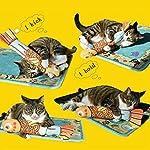VWH Catnip Cat Toys Animal Plush Fish Play Toy 3D Fish Cushion Pillow (20cm gold) 9