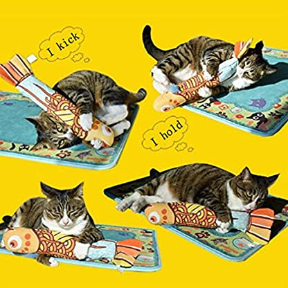 VWH Catnip Cat Toys Animal Plush Fish Play Toy 3D Fish Cushion Pillow (20cm gold) 4