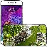 Just carcasa caliente estilo teléfono celular PC Funda rígida//m00139210Black Cherry Caterpillar Spun hilo//Samsung Galaxy S6(no para S6edge)