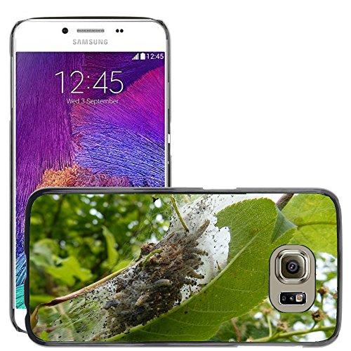 Nur Handy HOT STYLE HANDY PC Hard Case Cover//m00139210Black Cherry Caterpillar gesponnen Garn//Samsung Galaxy S6(passt nicht für S6Edge) -