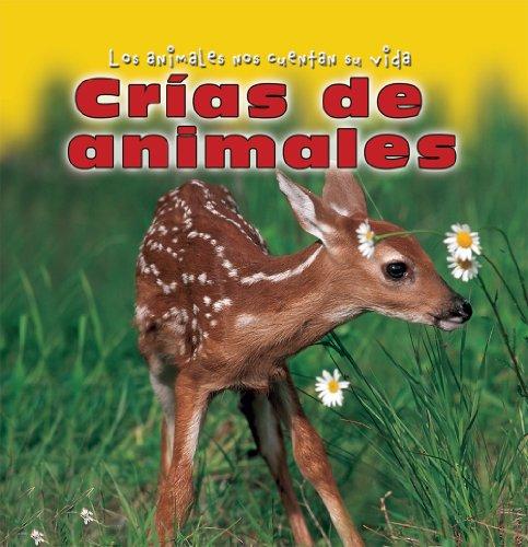 Crias De Animales/Baby Animals (Los Animales Nos Cuentan Su Vida/Animal Show and Tell)