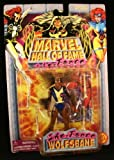 Marvel Hall of Fame She-Force Wolfsbane Action Figure by Toy Biz