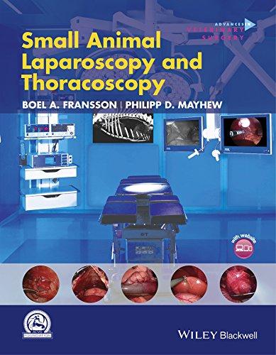 Small Animal Laparoscopy and Thoracoscopy (AVS Advances in Veterinary Surgery) por Philipp D. Mayhew