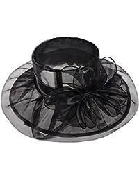 Vbiger Chapeau Femme en Tulle Anti-soleil Rétro pour Voyage