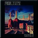 Pink Floyd - Metall Magnet - Animals