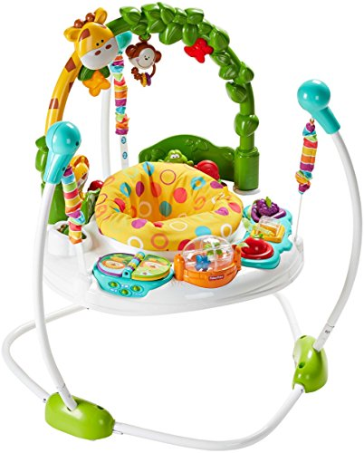 Fisher-Price Go Wild Jumperoo par Fisher-Price