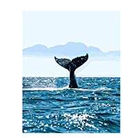 Mulmf Sea Whale Paint Painting by Numbers Picture Drawing Coloring On Canvas Painting Wall Paint by Number Animal- 50X70Cm No Frame